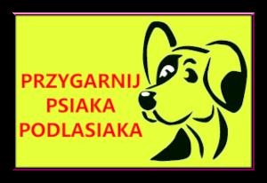 Przygarnij Psiaka Podlasiaka